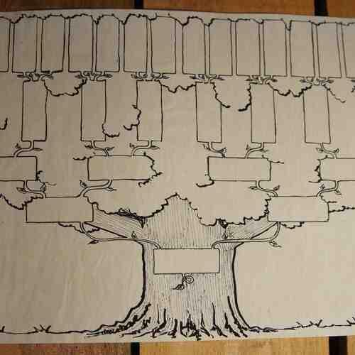 Comment rendre votre arbre généalogique gratuit?