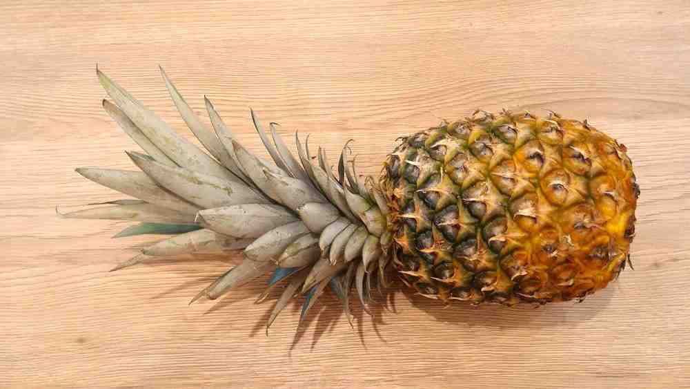 Comment planter un ananas dans le sol
