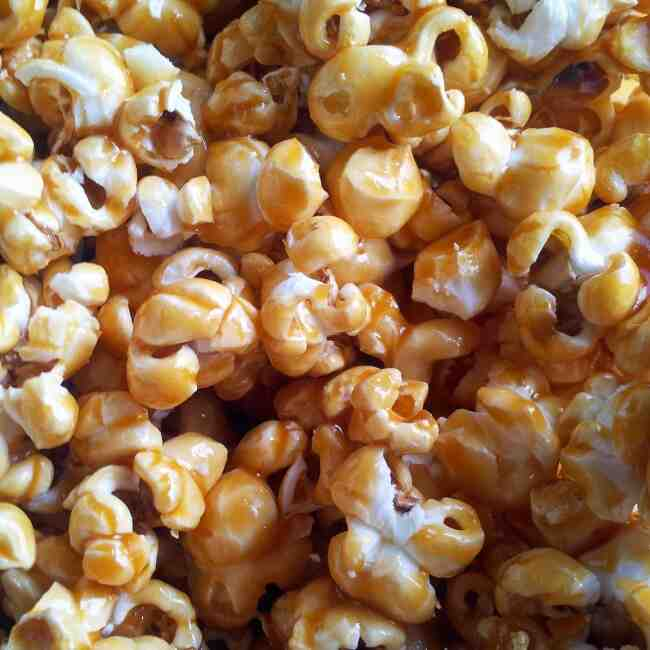 Quel type de maïs pour faire du pop-corn?