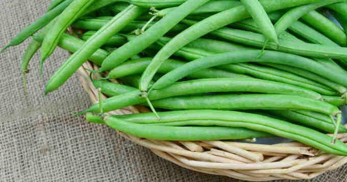 Comment faire cuire des haricots verts en conserve?