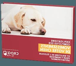 Comment faire vomir un chien qui s'étouffe ?