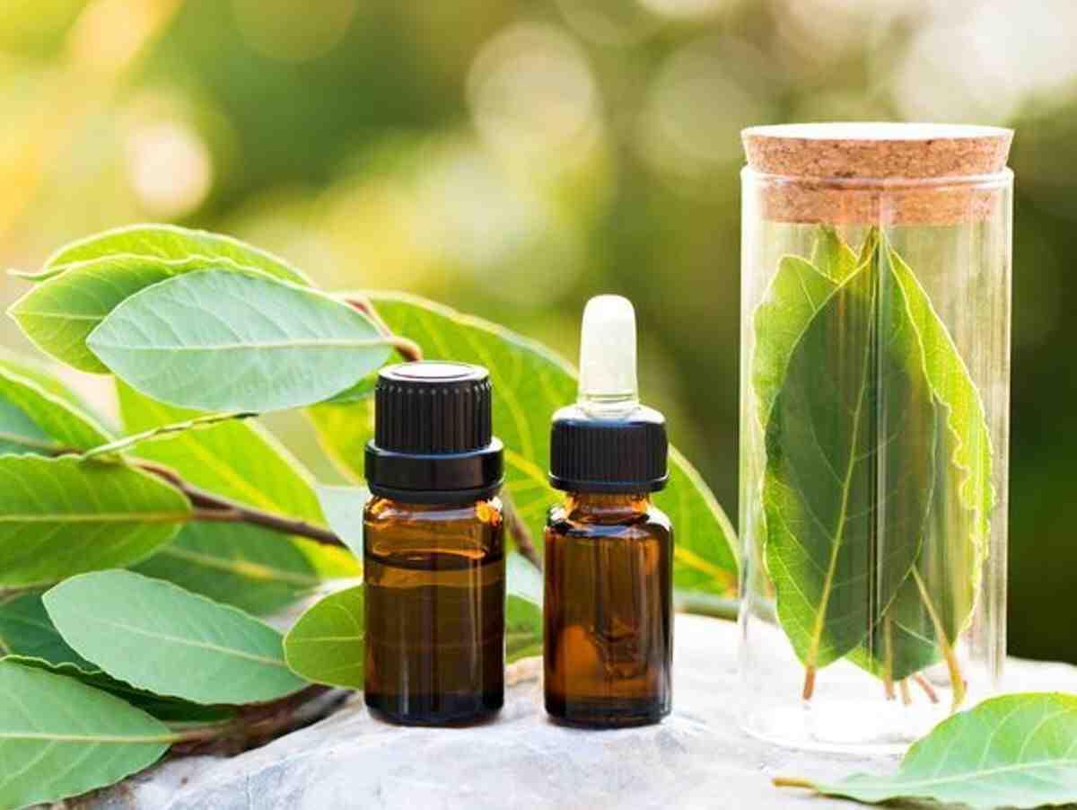 Quel est le traitement des maladies de la peau ?
