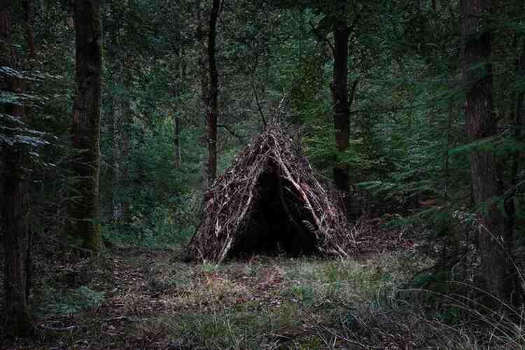 Comment construire une cabane sur terre ?